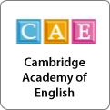 logo-msk_CAE
