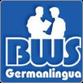logo-msk_BWS